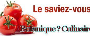 Tomate, le grand débat
