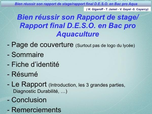 Rapport de stage exemple bac pro for Rapport de stage en cuisine exemple