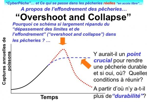 OvershootCollapseCybPech