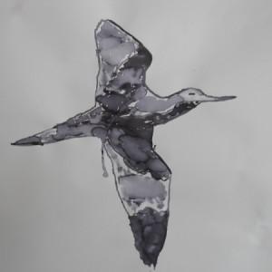 DSCN0946