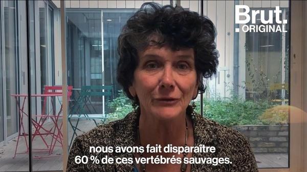 Isabelle Autissier, présidente du WWF France, tire la sonnette d'alarme.