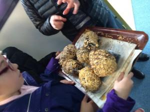 Pommes de pins poudrées de graines
